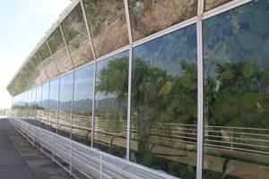 Biosphere II-2