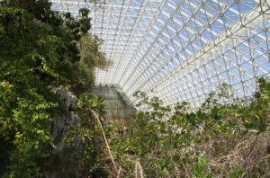 Biosphere II-4